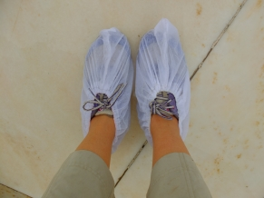 You have to use this shoes cover when you go inside the palace.